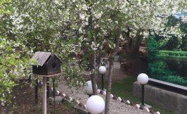 باغ عروسی چهارباغ فیروز بهرام