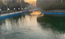 دریاچه و قایق سواری باغ تالار دارایی
