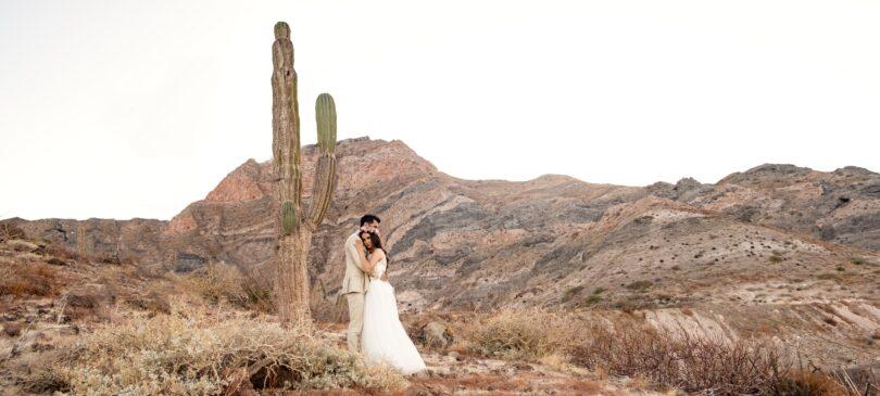 عکای فرمالیته عروسی در طبیعت