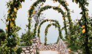 برگزاری مراسم در باغ عروسی