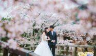 عروسی در بهار