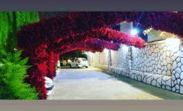 باغ تالار مهران عقد فضای باز