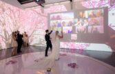 مراسم عروسی مجازی